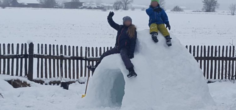 Building an igloo with SMART